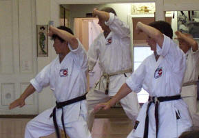 About_Karate_Kata