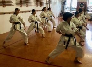 Takahashi Karate Womens Class